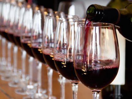 Martisor – degustacja win czerwonych (Mołdawia)